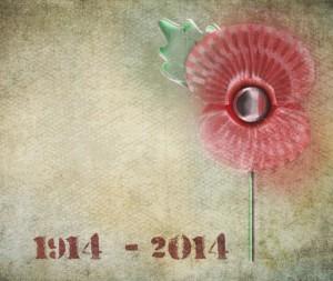 WW1 poppy 1914-2014