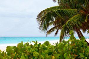 caribbean-beach-1340611619VMi